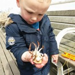 crabbing, family, norfolk, cromer, coast, seaside