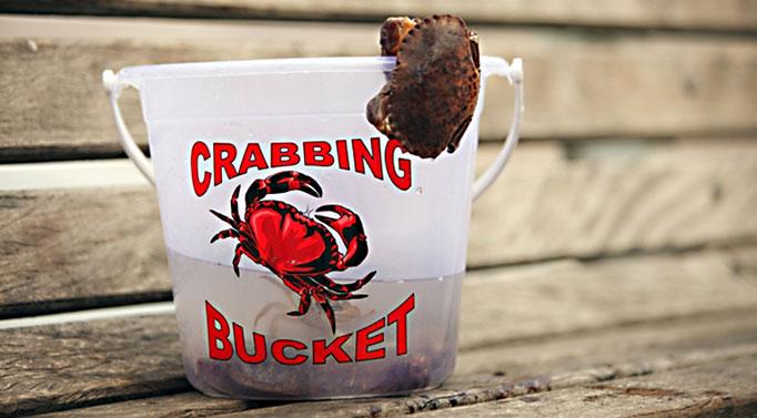 Crabbing Cromer Pier