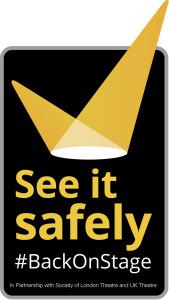 See it safely logo V+H